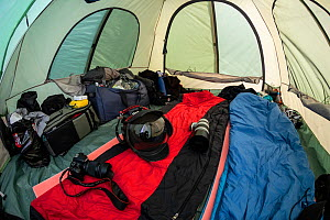 Photographic equipment ready inside tent in Vrangel Bay where Bowhead whale (Balaena mysticetus) congregate every summer. Primorsky Krai, Russia. August 2019.  -  Franco  Banfi