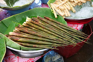 Bamboo (Bambusidae) shoots prepared for sale, on market stall. Bangkok, Thailand.  -  Nigel Cattlin