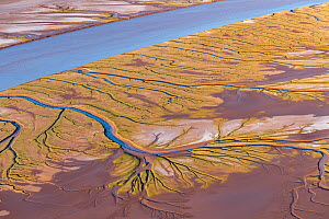 Patterns in the tidal  flats of the delta where the delta is swept by tidal encroachment from the Gulf of California. Evidence of the fresh water flow is observable as plant life turns green. Colorado...  -  Jack Dykinga