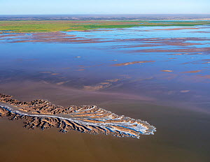 Patterns in the tidal flats of the Colorado River Delta where the delta is swept by tidal encroachment from the Gulf of California. Receding tide causes waterfalls approximately eight feet high, as wa...  -  Jack Dykinga
