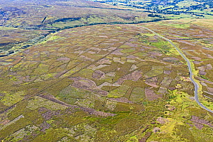 Aerial image showing patchwork pattern where moor has been burnt on rotation for maximising habitat to breed Red Grouse for driven grouse shooting. Grinton Moor above Swaledale, Yorkshire Dales, Engla...  -  David Tipling
