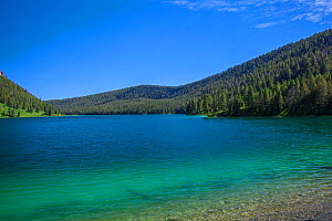 View of a freshwater lake, Beaverhead National Forest, Montana, July 2011.  -  Phil Savoie