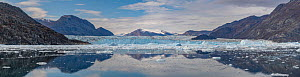 Rolige Glacier in Rode Fjord (Red Fjord), Scoresby Sund, Greenland, August. - John Shaw