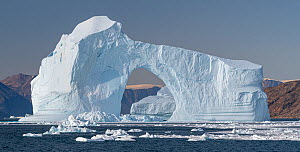 Iceberg with arch in Hall Bredning, Scoresby Sund, Greenland, August. - John Shaw