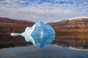 Iceberg and reflection, in Rode Fjord (Red Fjord), Scoresby Sund, Greenland, August.  -  John Shaw