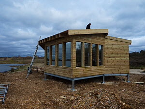 Construction of the new Tern Hide beside Ibsley Water, Blashford Lakes Nature Reserve. Hampshire and Isle of Wight Wildlife Trust Reserve, Ellingham, near Ringwood, Hampshire, England, UK, March 2019  -  Mike Read