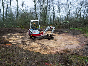 Digging for the new educational dipping pond, Blashford Lakes Nature Reserve. Hampshire and Isle of Wight Wildlife Trust Reserve, Ellingham, near Ringwood, Hampshire, England, UK, January 2019  -  Mike Read