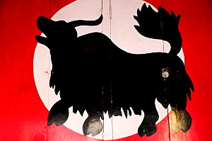 Yak drawn on a door in the city of Leh, Indus Valley, Ladakh, India. September 2011. - Enrique Lopez-Tapia