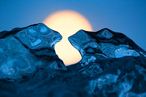 Ice sculpture formed like toads. Full moon in background. Iceland, May. - Espen Bergersen