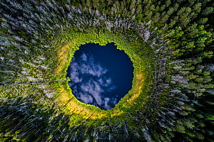 Aerial view of a small forest lake in Karula National Park, Valgamaa county, Southern Estonia. Highly commended in the Wildlife Photographer of the Year Awards 2019. - Sven  Zacek