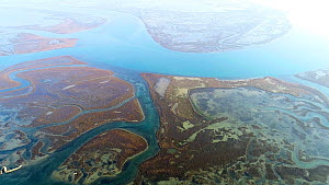 Aerial tracking shot of tidal channels in Venice Lagoon, Venice, Italy, October 2015.  -  Milan Radisics