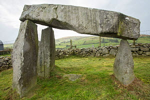 Legananny Dolmen, from Neolithic period, County Down, Northern Ireland. September 2019.  -  John Cancalosi
