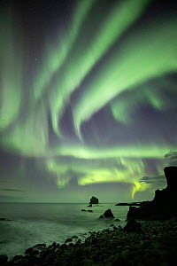 Aurora Borealis over Reykjanes Peninsula, Iceland, September. - Guy Edwardes