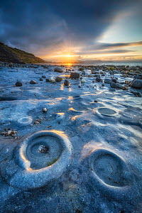 Ammonite Graveyard at sunrise, Monmouth Beach, Lyme Regis, Jurassic Coast World Heritage Site, Dorset, England, UK  -  Guy Edwardes