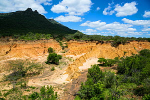 A donga or steep-sided ravine caused by erosion, Itala Game Reserve, KwaZulu-Natal, South Africa. Dongas are usually dry except in the rainy season.  -  Richard Du Toit