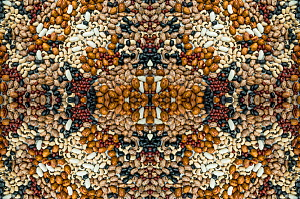 Kaleidoscopic image of a variety of pulses.  -  Georgette Douwma