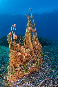 Abandonded fishing gear in seagrass meadow (Posidonia oceanica), Agia Pelagia, Heraklion, Crete, Greece  -  Dimitris Poursanidis