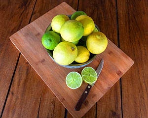 Freshly picked limes. Dominica, West Indies. Limes from Dominica are especially large and juicy. August 2019  -  Derek Galon