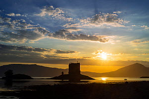 Castle Stalker, medieval four-story tower house / keep at sunset in Loch Laich, inlet off Loch Linnhe near Port Appin, Argyll, Scotland, UK. June 2018  -  Philippe Clement