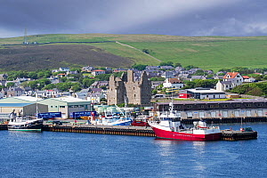 View over Scalloway Castle, museum and fishing boats in the harbour of the village Scalloway on the Mainland, Shetland Islands, Scotland, UK. June 2018  -  Philippe Clement