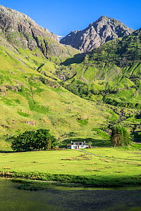 Achnambeithach Cottage on the shores of Loch Achtriochtan at the foot of Aonach Dubh, Glencoe, Lochaber, Highland, Scottish Highlands, Scotland, UK. June 2018 - Philippe Clement