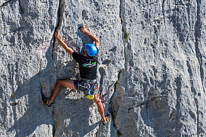 Rock climber climbing rock face in the Gorges du Verdon / Verdon Gorge canyon, Alpes-de-Haute-Provence, Provence-Alpes-Cote d'Azur, France, September 2018  -  Philippe Clement