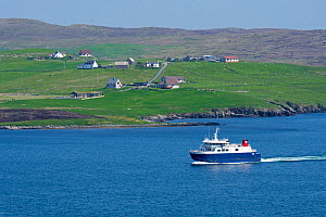 Whalsay ferry boat Linga sailing in Laxo Voe, Vidlin on the Mainland, Shetland Islands, Scotland, UK, May 2018 - Philippe Clement