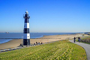 Levee / dyke and Nieuwe Sluis, lighthouse near Breskens which marks the entrance to the Western Scheldt / Westerschelde, Zeeland, the Netherlands, February 2019 - Philippe Clement