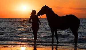 Horse rider leaving the water with horse on the beach at sunset along the North Sea coast, Belgium. Model released  -  Philippe Clement