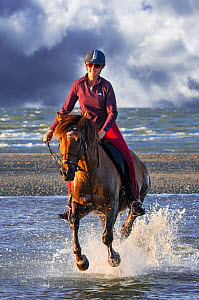 Horse rider on horseback galloping through water on the beach along the North Sea coast, Belgium. Digital composite. Model released  -  Philippe Clement