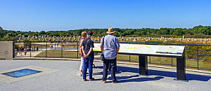 Tourists looking over standing stones of the Menec alignments from panoramic terrace of the Maison des megalithes at Carnac, Brittany, France, September 2019  -  Philippe Clement