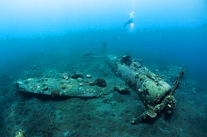 A scuba diver next to the Mitsubishi Zero, Japanese World War Two fighter plane, Kimbe Bay. West New Britain, Papua New Guinea  -  Shane Gross
