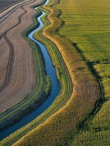 Aerial view of drainage channel in the Marais Poitevin, Vendee, France, August.  -  Loic Poidevin