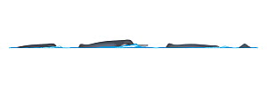 Yangtze river dolphin or baiji (Lipotes vexillifer) Dive sequence     No more than 15 illustrations by Martin Camm, Rebecca Robinson and/or Toni Llobet to be used in a single project or book editio...  -  Rebecca Robinson / Carwardine