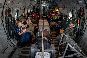 Inside of a Royal Australian Airforce (RAAF) C-27J Spartan that is transporting 6 koalas (Phascolarctos cinereus) that were burnt in the Mallacoota (Victoria, Australia) bushfires and are now being ev... - Doug Gimesy