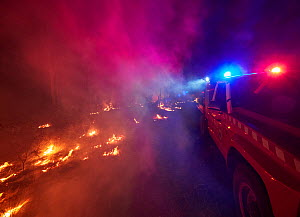 Angledale Rural Fire Service brigade patrolling a backburn to protect the edge of Bermagui township, New South Wales, Australia. January 2020.  -  David Gallan