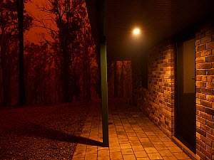 House photographed during a bushfire in Tathra, New South Wales, Australia. The photograph was taken at noon but ash and smoke from the fire darkened the sky and created night time conditions. Badja F... - David Gallan