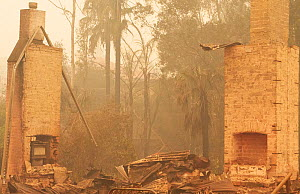 Remains of a building after a bushfire in Cobargo, New South Wales, Australia. January 2020. - David Gallan