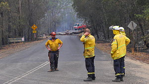 Rural Fire Service volunteers staff a road block, waiting for heavy machinery to help clear the road. The surrounding forest was burned during the December 2019 bushfires. - David Gallan