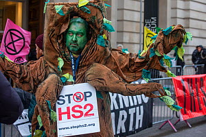 A protestor campaigning against HS2 High speed rail, dressed as an �ancient tree' outside the Science Musuem London.February, 2020.  -  Matthew Maran