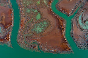 Coloured water leaking from photogypsum storage pond creates tidal channels in saltmarsh habitat. Huelva, Southern Spain. Phosphogypsum is a radioactive by-product in the manufacture of phosphoric aci...  -  Milan Radisics