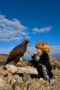 Young Eagle hunter (Berkutchi) with his Golden eagle (Aquila chrysaetos) Altai, Mongolia. Model released.  -  Klein & Hubert