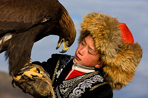 Young Eagle hunter (Berkutchi) with his Golden eagle (Aquila chrysaetos) portrait, Altai, Mongolia. Model released. - Klein & Hubert