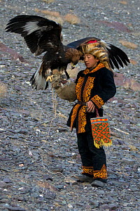 Young Eagle hunter (Berkutchi) in traditional clothes with his Golden eagle (Aquila chrysaetos) during training, Altai, Mongolia. Model released.  -  Klein & Hubert
