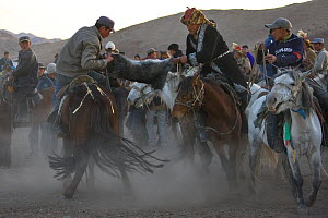 Equestrian game Kokpar similar to the Buzkachi, in which horse riders try to steal goat carcass from competitors, before proceeding to the goals. Altai, Mongolia.  -  Klein & Hubert