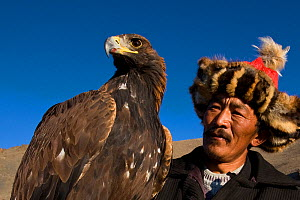 Eagle hunter (Berkutchi) with his Golden eagle (Aquila chrysaetos) portrait, Altai, Mongolia. Model released.  -  Klein & Hubert