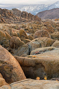 Deeply weathered granite boulders below the snow covered Sierra Nevada Mountains, in the Alabama Hills, California, USA, November.  -  John Shaw