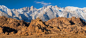 Weathered granite boulders and snow-covered Sierra Nevada Mountains. Mt. Whitney, tallest mountain in the contiguous United States with an elevation of 14,505 feet. is just left of center. Alabama Hil...  -  John Shaw