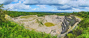 Aberduna disused limestone quarry surrounded by Aberdune North Wales Wildlife Trust reserve. Maeshafn village, North Wales, UK. August 2019.  -  Alan  Williams