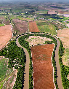 Meander in the Rio Grande, illustrating the complications of building a US-Mexico border. Aerial view looking north from El Horcon, Tamaulipas, Mexico into Texas, USA. July 2019.  -  Wendy Shattil